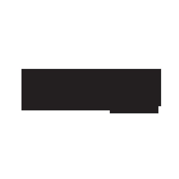 RuleDesigner è sviluppatore autorizzato Autodesk